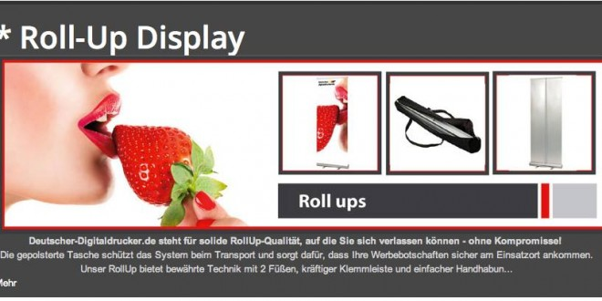 "Roll-Up Display ""Springroll"" – Unser Topseller"