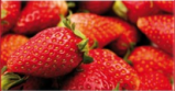 Obstbanner